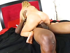 Taylor Wane rides schlong and obtains face jizzed later on giving BJ